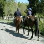 Cabalgatas en Pucón
