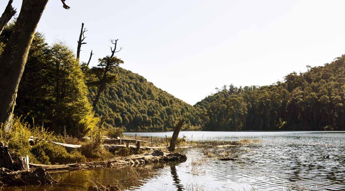Lagunas Parque Nacional Huerquehue